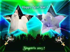 Godt Nyttår 2015 !