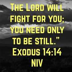 """14 The Lord will fight for you; you need only to be still."""" Exodus 14:14 NIV https://bible.com/bible/111/exo.14.14.NIV"""