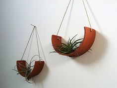 Hanging Air Plant Cradle tm  Natural TerraCotta by mudpuppy, $36.00 made with Terra Cotta unglazed