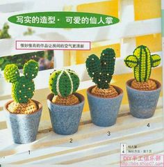 Cactus - Foto Photo: This Photo was uploaded by erchristianini. Find other Cactus - Foto pictures and photos or upload your own with Photobucket free im. Cactus En Crochet, Knit Or Crochet, Cute Crochet, Crochet Toys, Crochet Flower Patterns, Crochet Flowers, Cactus E Suculentas, Cactus Craft, Amigurumi For Beginners