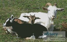 Goats Cross Stitch Pattern http://www.artecyshop.com/index.php?main_page=product_info&cPath=1_3&products_id=113