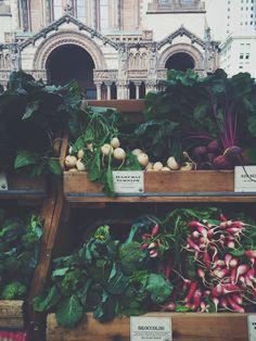 Urban Market. | Bit by Bon  Farmer's Market. Copley Square. Boston. Turnips.