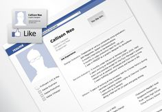 27 More Outstanding Resume Designs - Part II - DzineBlog.com