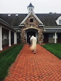 Just your average Big Eq Rider Equestrian Stables, Horse Stables, Horse Farms, Equestrian Decor, Dream Stables, Dream Barn, Horse Barn Designs, Show Jumping Horses, Horse Riding Tips