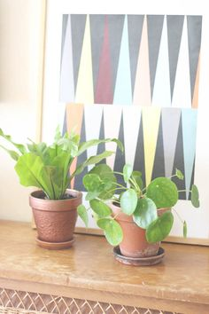 Urban Jungle Bloggers: Plants & Art by @mymycracra