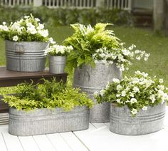 Galvanized Metal Tubs, Buckets, & Pails as Planters (These are ABSOLUTELY my fav. Galvanized Metal Tubs, Buckets, & Pails as Planters (These are ABSOLUTELY my favorite planters for container gardens. Galvanized Planters, Metal Planters, Flower Planters, Planter Pots, Galvanized Metal, Fern Planters, Planter Ideas, Galvanized Decor, Outdoor Flower Pots