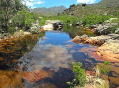 rivers of western cape - Google Search Africa Destinations, Xhosa, Safari Adventure, Rock Pools, South Africa, Cape, Rivers, Places, Nature
