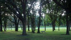 Island Park ~Fargo