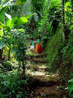 Take me here. Wayanad, India.