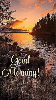 Good Morning Sunrise, Good Morning Coffee Gif, Good Morning Flowers Gif, Good Morning Picture, Good Morning Good Night, Good Morning Friends Images, Happy Good Morning Quotes, Good Morning Love Messages, Morning Pictures