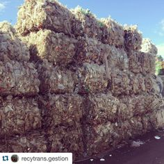 #Repost @recytrans.gestion with @repostapp.  Balas / Fardos...