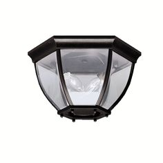 This 2-light outdoor flush mount features a black finish that will complement many traditional decors. The clear beveled glass panels set inside the black cast aluminum frame will add interest to any