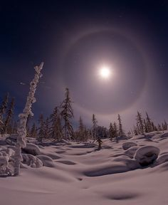 The full moon was by accompanied bright halo! The landscape is shone by the moonlight! Beautiful Moon, Beautiful World, Winter Schnee, Shoot The Moon, Snow Scenes, Winter Beauty, To Infinity And Beyond, Amazing Nature, Night Skies