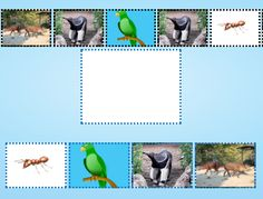 Continue sequence of animals