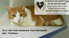 SUPER URGENT: EUTH LIST FOR WED 9/3. Too many pets came in over holiday...NEED RESCUE OR ADOPTION (COMMITMENT) NOW!!!