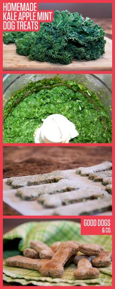Homemade Kale Apple Mint Dog Treats! These are absolutely addictive to dogs! And so easy to make!