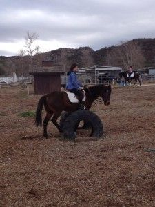 Sweetie practices obstacles similar to those she might encounter on a trail ride.