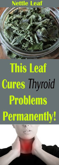 This Leaf Cures Thyroid Problems Permanently! – Let's Tallk