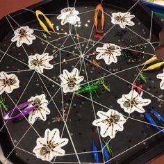 Maths challenge with funky fingers. 11 -20. EYFS, RECEPTION, NUMBER, spiders