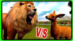 Amazing Animal Fights - Wild Lion Hunting Deer   Wildlife Animals Short ...