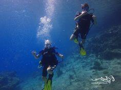Junior divers having fun ...  #scuba #relaxedguideddives #duikeninbeeld #diving #duiken #tauchen #fun #curacao