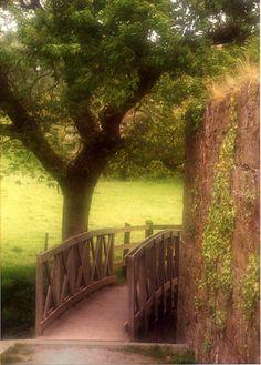 City Park, Tarbert, Ireland