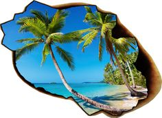 Wall decal tropical beach