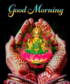 Good Morning Beautiful Flowers, Good Morning Roses, Good Morning Images Flowers, Beautiful Love Pictures, Good Morning Gift, Free Good Morning Images, Gd Morning, Friday Morning Quotes, Hindi Good Morning Quotes