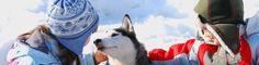 Trineo con perros huskies con los niños en un viaje a Laponia