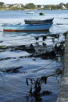 Saint-Cado ~ Barques dans le port ~ Bretagne, Morbihan