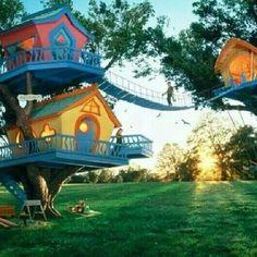 秘密基地 Tree House