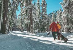 Bewegung an frischer Luft tut gut! Visit California, California Coast, California Travel, Mammoth Mountain, Mammoth Lakes, Sequoia National Park, National Parks, Snowboarding, Skiing