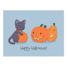 #Halloween Black Cat and Pumpkins on Grey Postcard - #Halloween happy halloween #festival #party #holiday