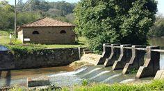 Flona  - Fazenda  Nacional Ipanema  - Iperó - SP