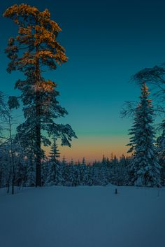 The golden hour (by Tore Thiis Fjeld)