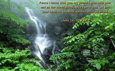 John 14:27  Peace I leave with you, my peace I give unto you.  Let not your heart be troubled, neither let it be afraid.  (KJV)