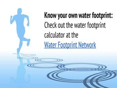 Do you know your water footprint? - The Water We Eat | Craftsmanship, Spring 2015