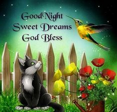 Good Night Sweet Dreams God Bless