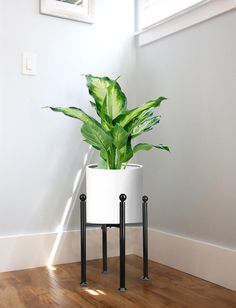 bd00f8e996c7 Metal Plant Stand Mid Century Modern Indoor Outdoor Potted Plant Holder,  Black Anti-Rust