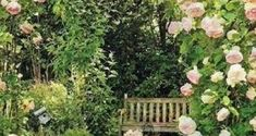 Rose covered stone path to a bench. Love light pink roses, so girly. Beautiful Flowers Garden, Beautiful Gardens, Romantic Backyard, Johanna Basford Secret Garden, Flower Garden Design, Stone Path, Pink Garden, Outdoor Living, Outdoor Decor