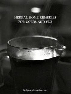 best herbal cold remedy, best herbal flu remedy