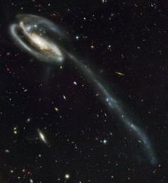 ESPACE - Cette année, le télescope spatial Hubble souffle ses 25 bougies. Pour l'occasion, la NASA et l'Agence spatiale européenne ont publié ses plus belles photos du cosmos, 25 au total, une pour ch...