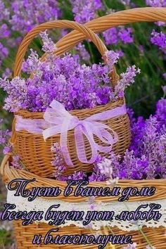 Beautiful Day, Good Morning, Favorite Quotes, Decorative Boxes, Basket, Cards, Bristol, Facebook, Flowers