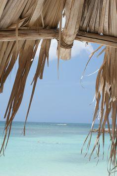 Aruba's tropical waters