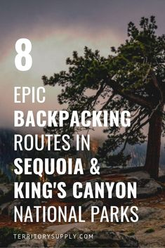 Discover 8 epic backpacking trips in Sequoia & Kings Canyon National Parks, including Lakes Trail to Pear Lake, High Sierra Trail, Rae Lakes Loop and more. Sequoia National Park, Us National Parks, National Forest, Backpacking Trails, Ultralight Hiking, Hiking Trips, Hiking Backpack, Travel Backpack, Travel Bags