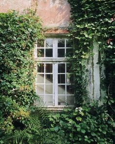 Spotting green windows everywhere. Also it looks like Autumn is coming very quickly! Have a good Friday everyone
