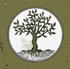 Tree. Vector Illustration. Clipart image. EPS PDF by VectorClash