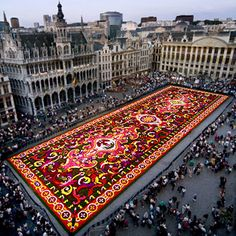 A carpet the size of 14 tennis courts! Made of begonias!