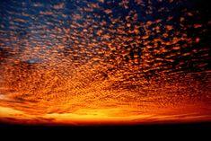 What a wonderful fiery sky.