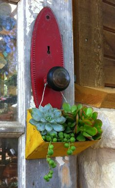 Small Yellow Iron Planter Succulents!  Hang It! <3  (that was a mouth full! HA!)